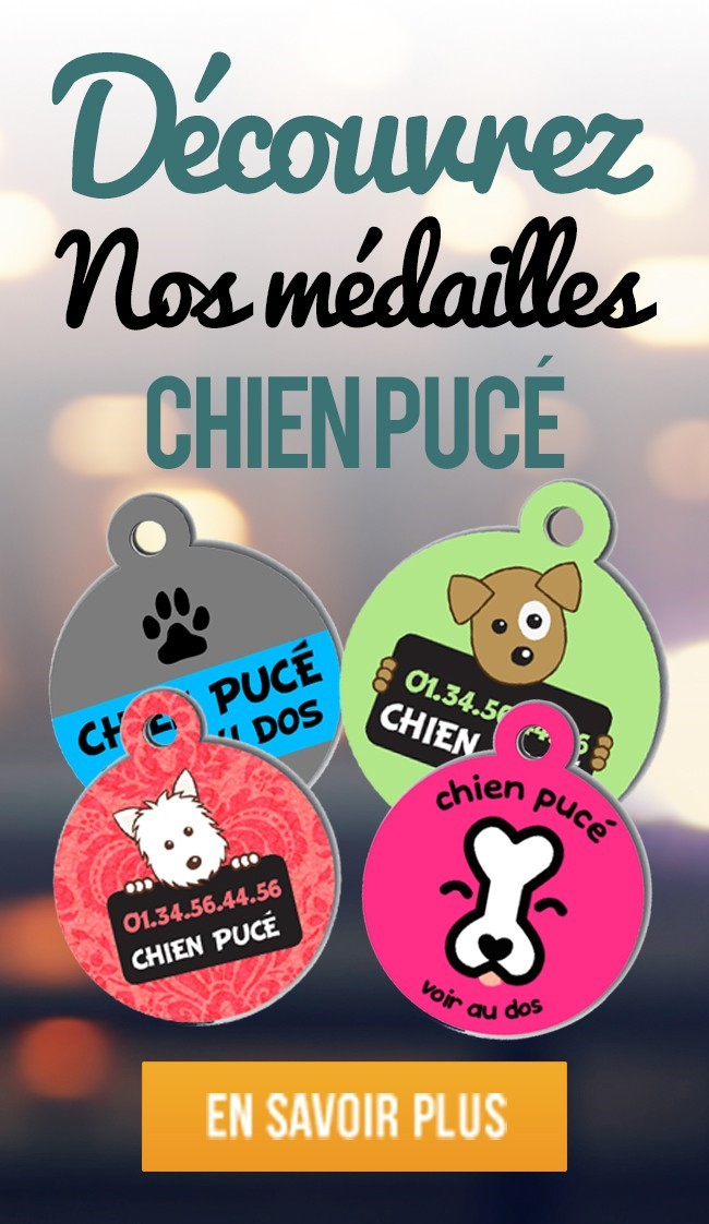 Medaille Chien Geolocalisable Medaille Chien France